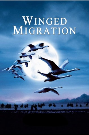 Winged Migration (2002)