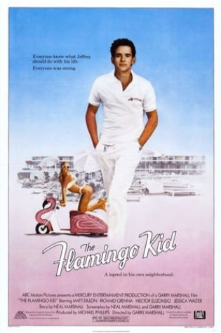 The Flamingo Kid (1984)