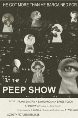 Peep Show (2003–2015)