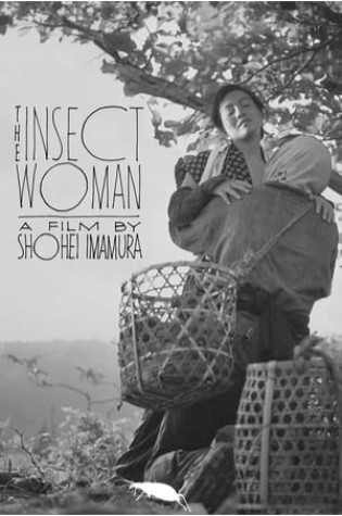 The Insect Woman (1963)