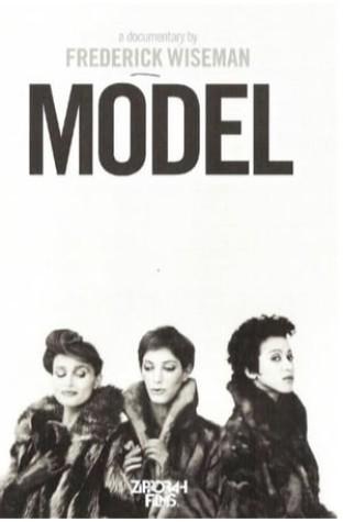 Model (1981)