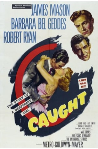 Wild Calendar (1949)