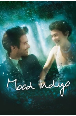 Mood Indigo (2013)