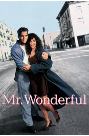 Mr. Wonderful (1993)