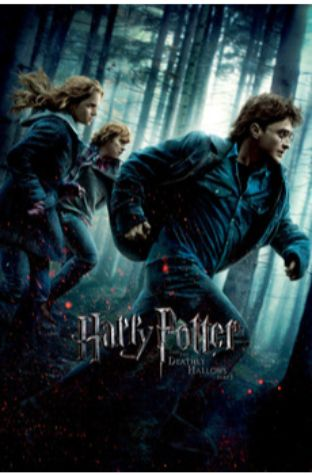 Harry Potter and the Deathly Hallows I (2010)