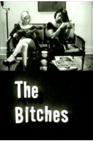 The Bitches (1992)