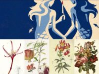 <em>Blow The Man Down</em> Film Review – Murder, Sisterhood, Fisherman Chorus, And A Parallel To 1800s Botanical Artists